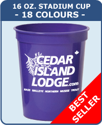 16 Oz Smooth Stadium Cups - 18 Colours